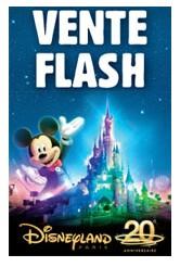 Vente flash disneyland entree pour les deux parcs pour 30 euros seulement - Discount vente flash ...