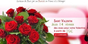 Pas chere Saint Valentin Fleurs 123fleurs