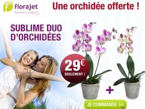 1 Orchidée achetée = 1 Orchidée Offerte Florajet