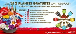Willemse 312 plantes GRATUITES