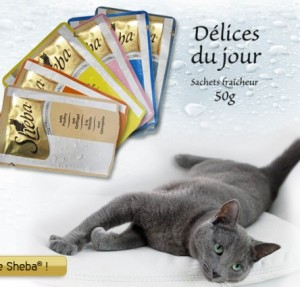 Echantillon gratuit Sheba