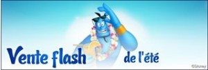 VENTE FLASH DISNEY LAND
