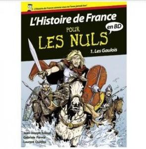 Ebook Histoire de France en BD Pour les Nuls GRATUIT