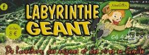 entrées pas chères pour Le Parc des Labyrinthes Géants