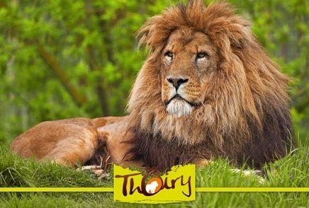 Entrée au parc zoologique de Thoiry moins chère