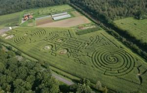 billets pas chers Labyrinthe de Beauregard