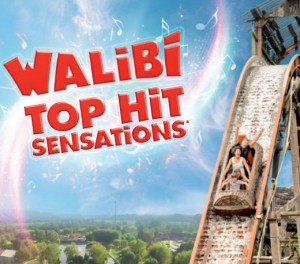 entree Walibi Sud-Ouest pas chere