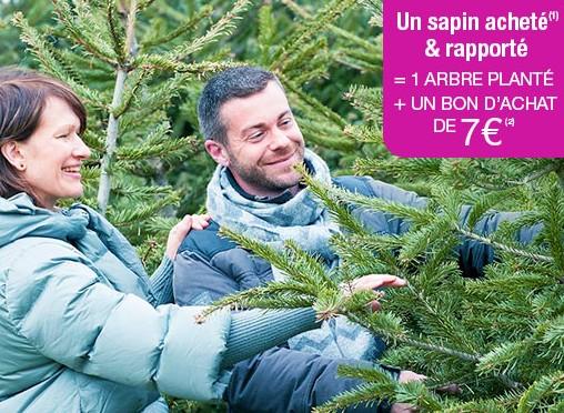 sapin de Noel jardinerieTruffaut 7 euros en bon d'achat