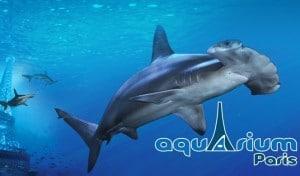 Aquarium de Paris moitie prix