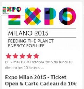 29 euros le billet Expo Milan 2015