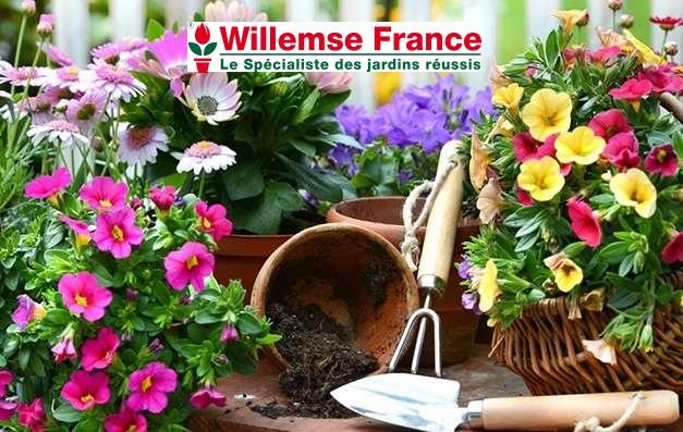 Bon d'achat Willemse GROUPON