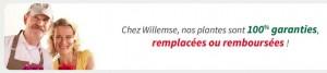 Willemse Groupon