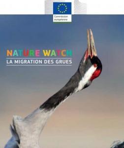 livre gratuit Nature watch 7 -11 ans la migration des grues