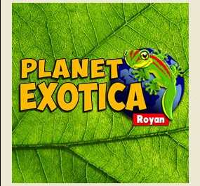 Planet Exotica Royan