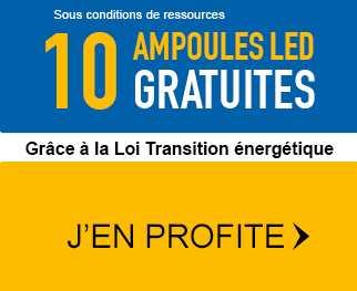 Demandez vos 10 ampoules LED Gratuites