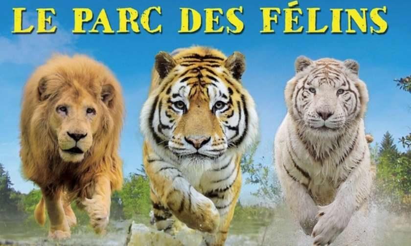 Parc Zoologique des Félins pas cher