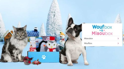 Animal Box Moins Chère Miaou Box Ou Wouf Box
