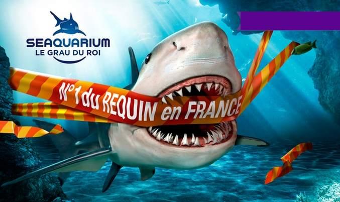 Aquarium seaquarium du grau du roi pas cher seulement 8 for Plan grau du roi