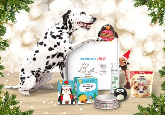 Animal box (Miaou box / Wouf box) moitié prix