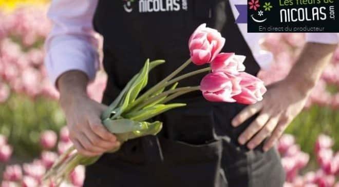 Bouquet de tulipes archives bons plans malins - Fete des grand mere 2017 ...