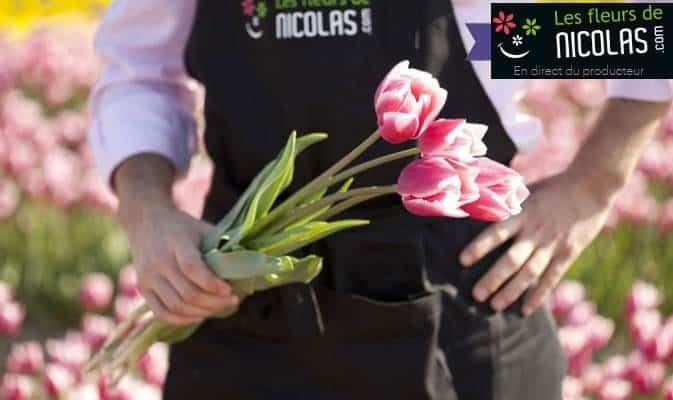 Fête des grands-mères : bouquet de tulipes