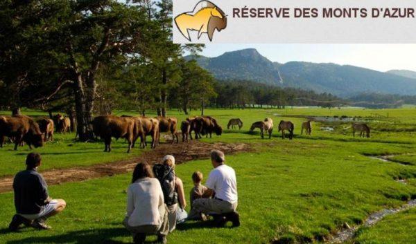 Safari dans la reserve Biologique des Monts D'Azur moins cher