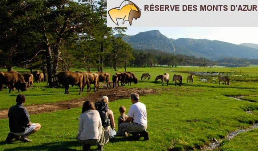 safari dans la r 233 serve biologique des monts d azur moins cher 224 partir de 8