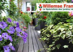 20€ pour faire 40€ d'achat sur Willemse (bon d'achat valable sur les promos) 🌱