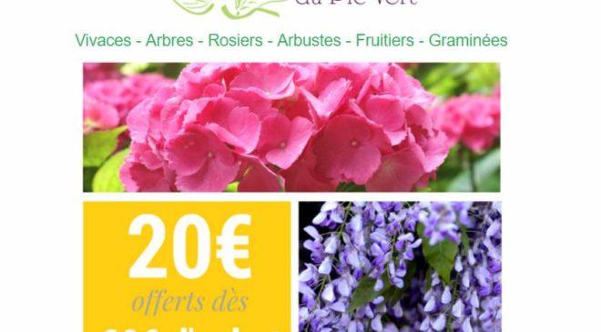Bon plan jardinerie en ligne : -20€ des 60€ d'achat sur Jardin du Pic Vert