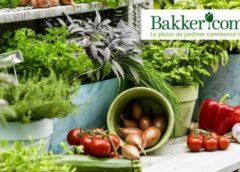 Bon d'achat Bakker moitié prix : 20€ pour 40€ d'achats (cumulable avec promo)