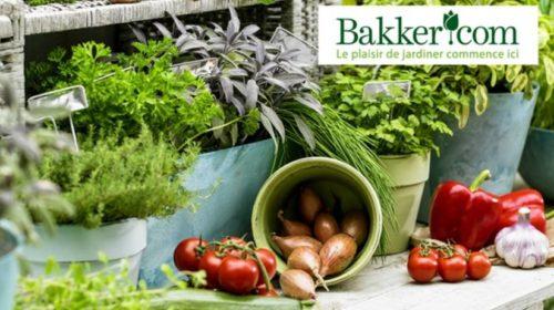 Bon d'achat site Bakker