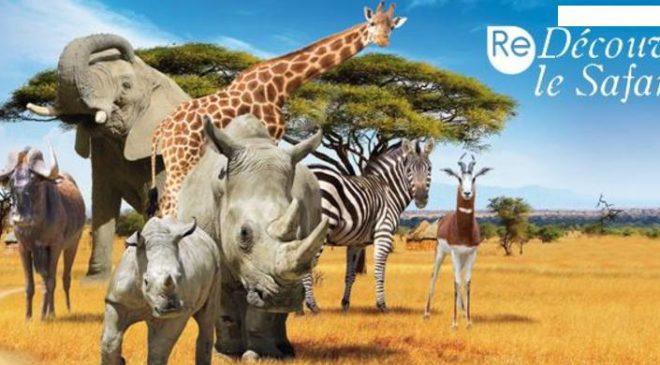 Safari de Peaugres entrée + restauration pas chère
