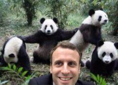 Gratuit : 1 selfie avec Emmanuel Macron 😜