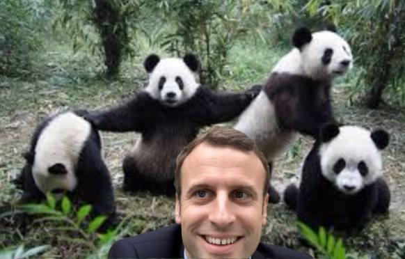 votre selfie avec Emmanuel Macron