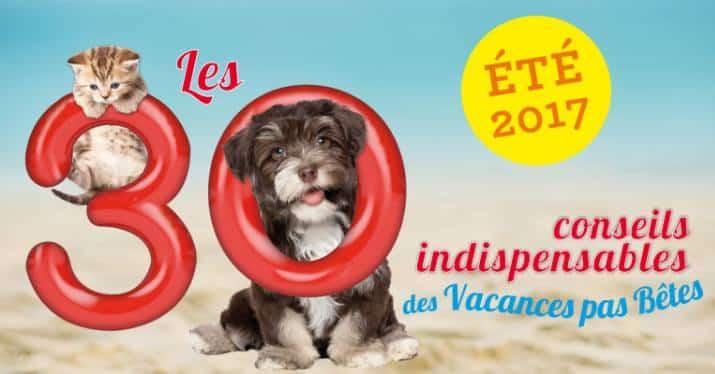 Recevez le Kit Vacances pas Bêtes 2017 de 30 millions d'amis gratuitement