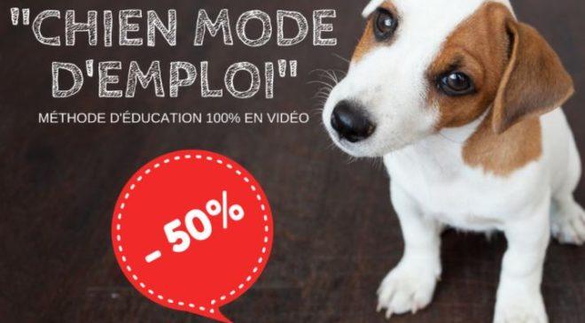 -50% sur Chien Mode d'Emploi : méthode pour éduquez votre chien ou chiot