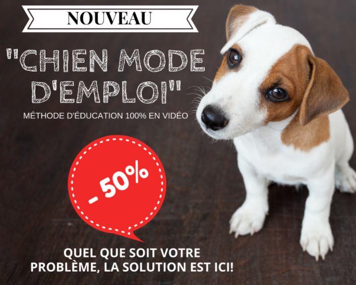 50 sur chien mode d 39 emploi m thode duquez votre chien ou chiot. Black Bedroom Furniture Sets. Home Design Ideas