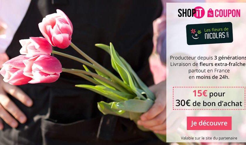 Bon d'achat Les Fleurs de Nicolas moitié prix