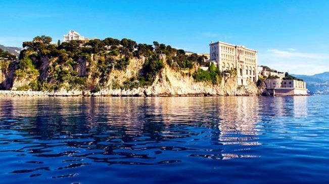 Entrée au musée Océanographique de Monaco moitié prix