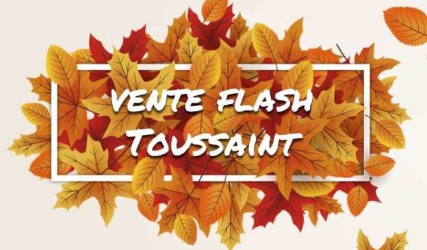 Vente Flash VVF Villages