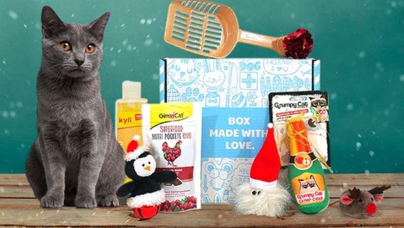 Animal box (Miaou box - Wouf box) moitié prix
