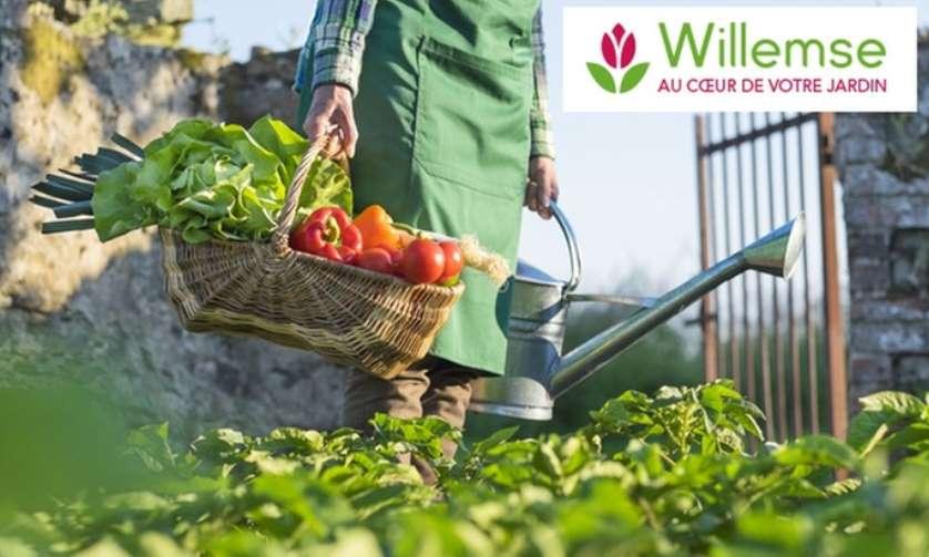 Bon d'achat Willemse