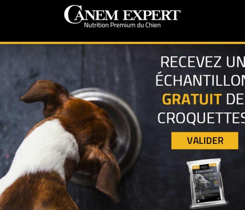 échantillon croquettes pour chien Canem Expert