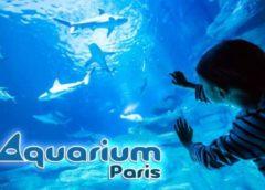 Entrée à l'Aquarium de Paris moitié prix