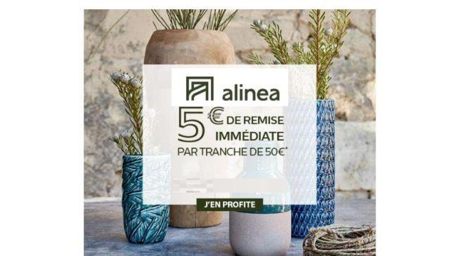 5€ de remise immédiate sur Alinea