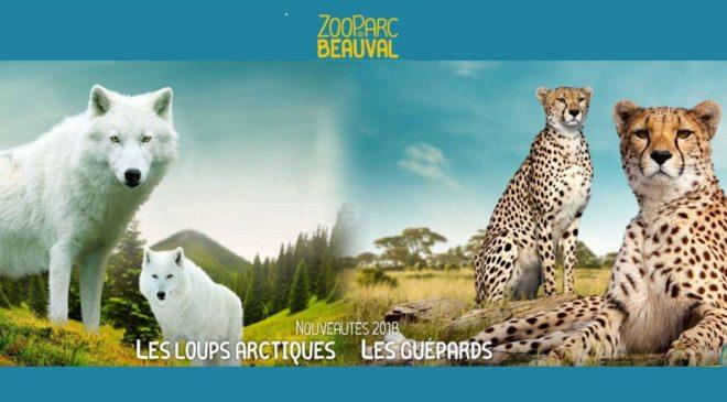 Billet ZooParc de Beauval 2 jours au prix 1 jour