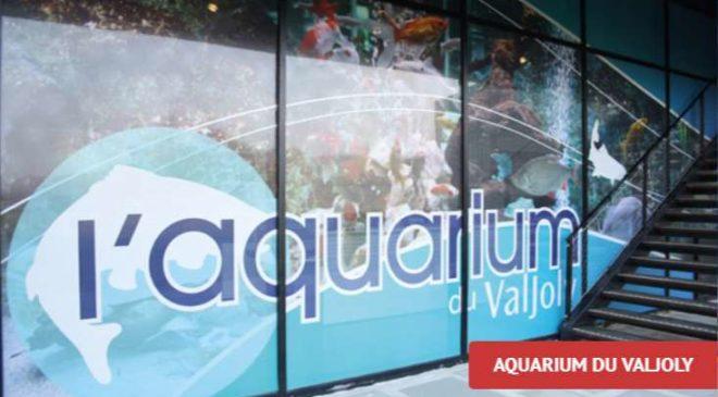 Billet aquarium du Valjoly pas cher