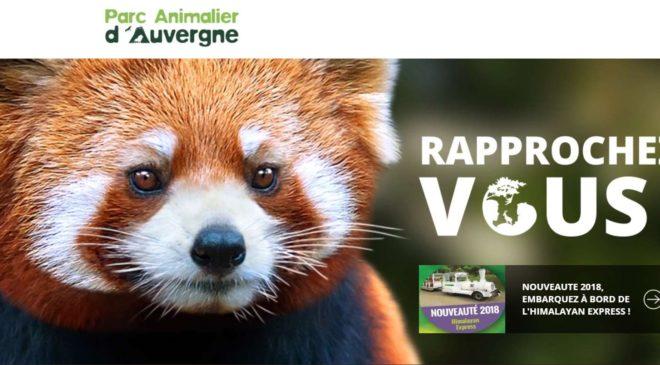 Journée au Parc Animalier d'Auvergne moins cher