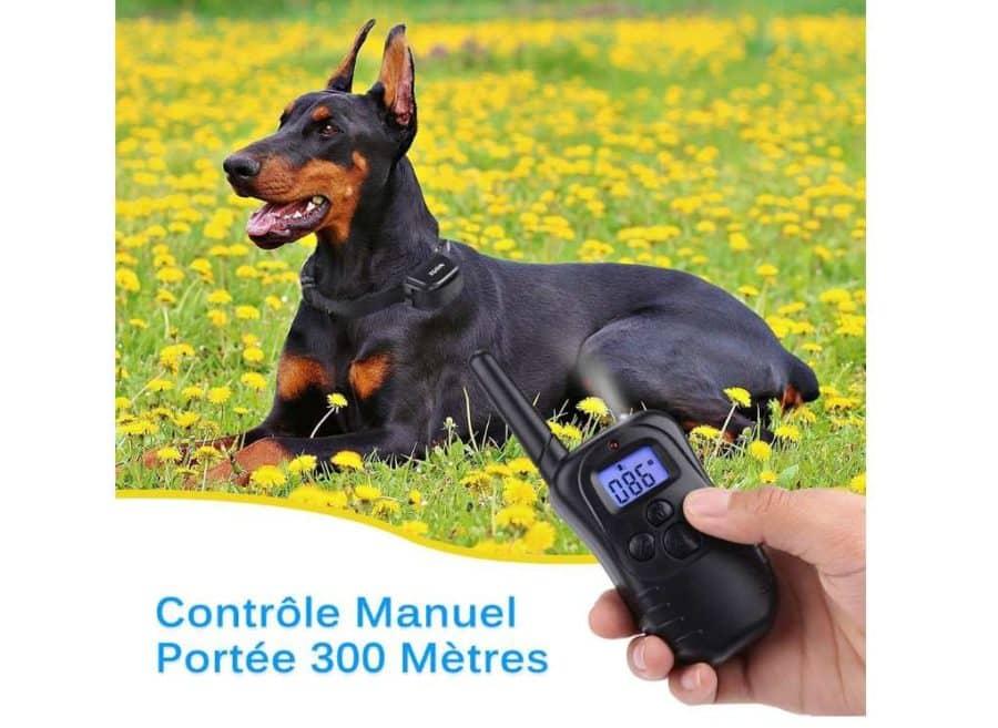 collier pour chien avec telecommande