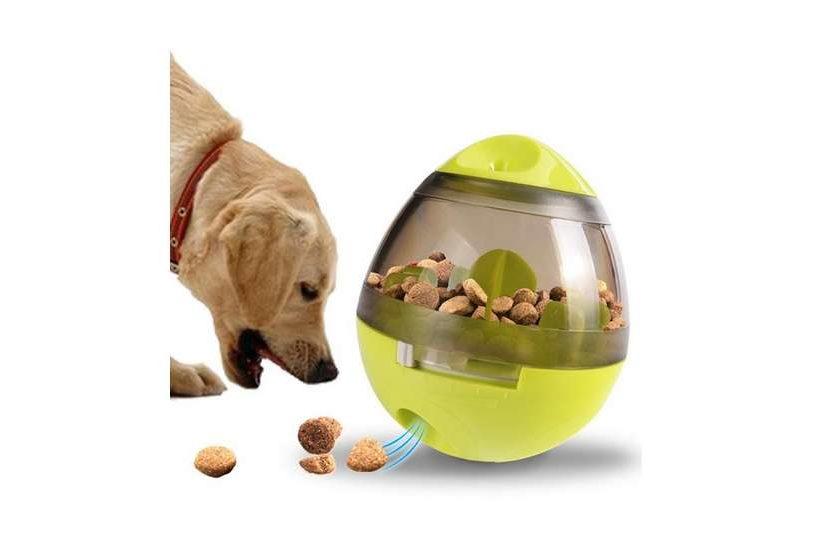 distributeur de croquettes jouet pour chien ou chat